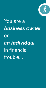You are a Business Owner or Individual